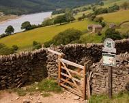 Dog Friendly Accommodations in the Peak District