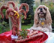 Doggy Candy Canes Recipe